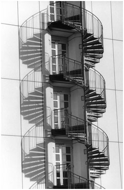 Spiraling Staircase with Shadow